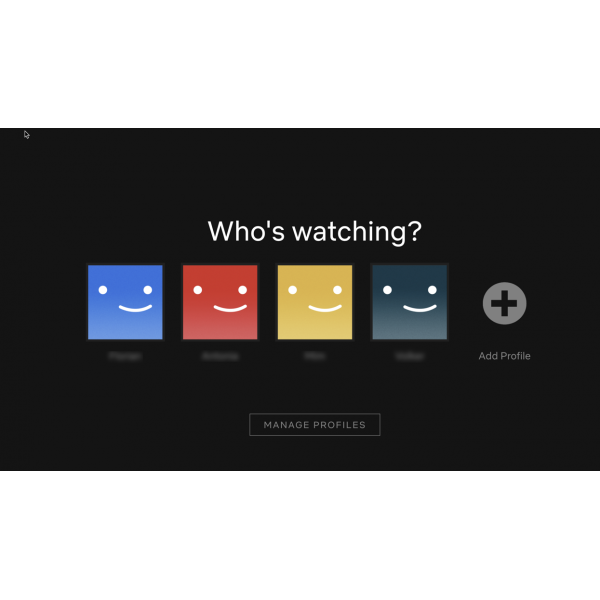 Shared Netflix Subscription - 12 Months | 1 Screen
