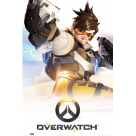 Overwatch (Battlenet/PC)